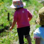 5歳児の遊びと様々な場面での看護